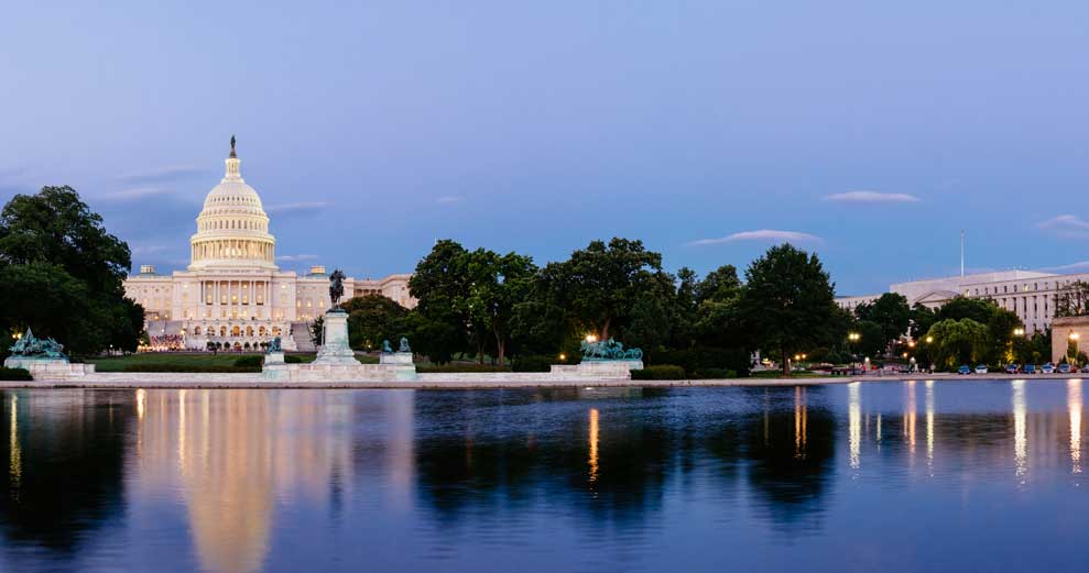 Top Things for Students to Do in Washington, D.C.